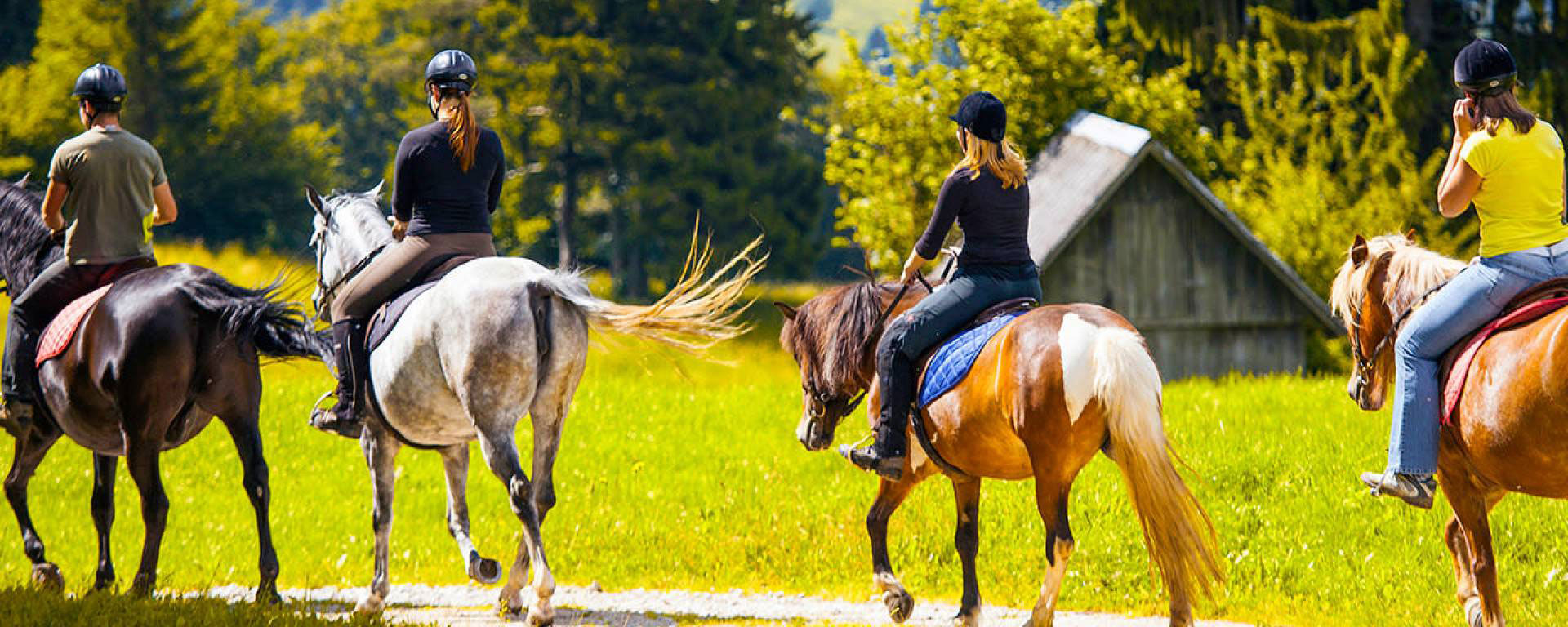 Horse & Rider Products